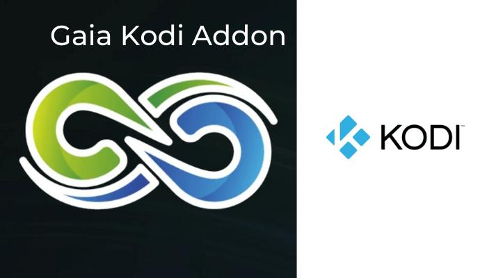 How to Install Gaia Kodi Addon on Leia & Krypton