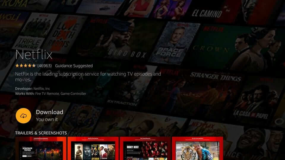 Download Netflix on Firestick