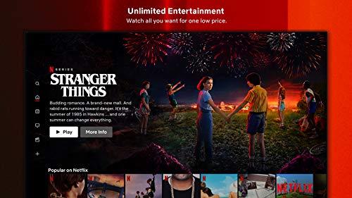 Netflix on Firestick Home