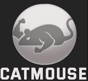 CatMouse - Money Heist Season 5 on Firestick