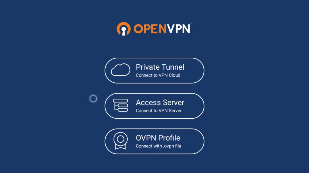 Private Tunnel - OpenVPN on Firestick